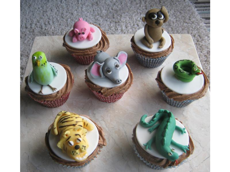 Animal Cupcakes in sponge for Tracey of Fulwood - 8th birthday