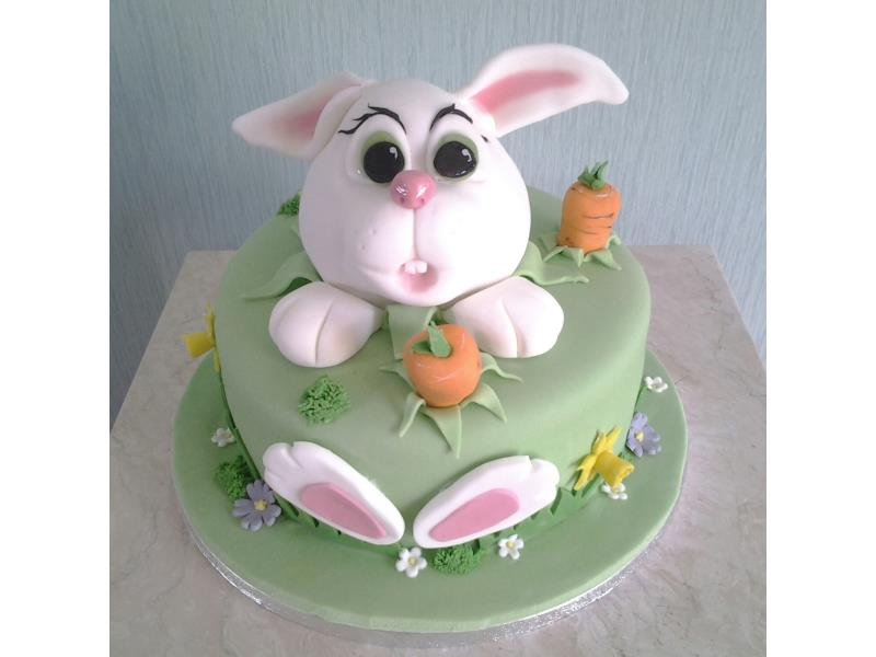Easter Bunny cake for birthdays or Easter; children or adults. For Sue in Thornton